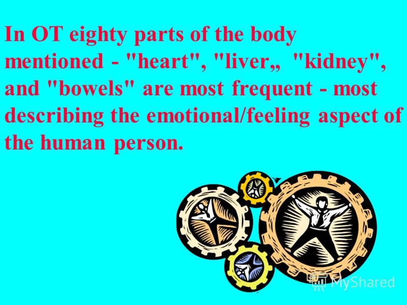 In OT eighty parts of the body mentioned - heart, liver kidney, and bowels are most frequent - most describing the emotional/feeling aspect of the human person.