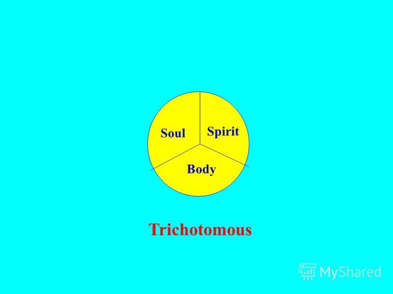Soul Spirit Body Trichotomous