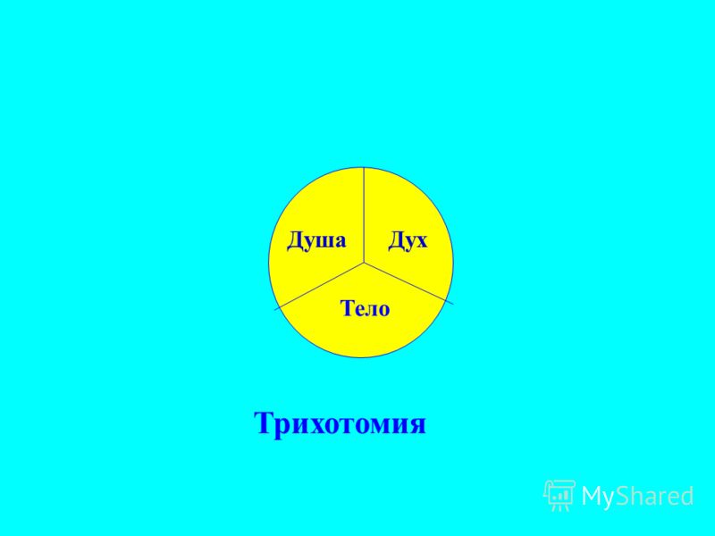 ДушаДух Тело Трихотомия