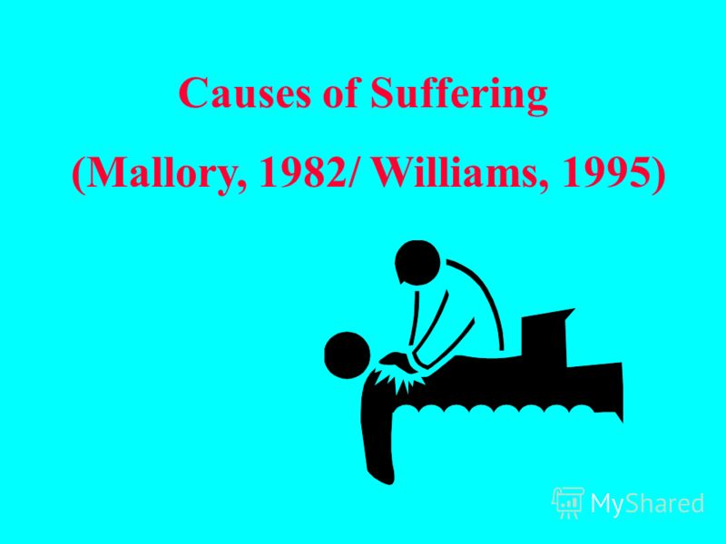 Causes of Suffering (Mallory, 1982/ Williams, 1995)