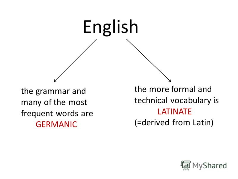 English the grammar and many of the most frequent words are GERMANIC the more formal and technical vocabulary is LATINATE (=derived from Latin)