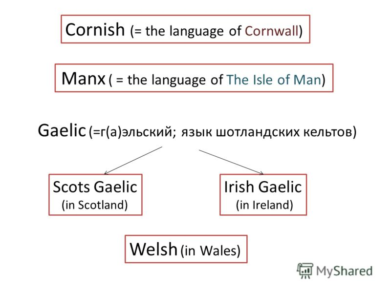 Cornish (= the language of Cornwall) Manx ( = the language of The Isle of Man) Gaelic (=г(а)эльский; язык шотландских кельтов) Scots Gaelic (in Scotland) Irish Gaelic (in Ireland) Welsh (in Wales)