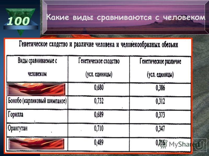 Таблицы 100 200 300 400 500 Изображения 100 200 300 400 500 Схемы 100 200 300 400 500 Тексты 100 200 300 400 500 Тема игры «Генетика человека»