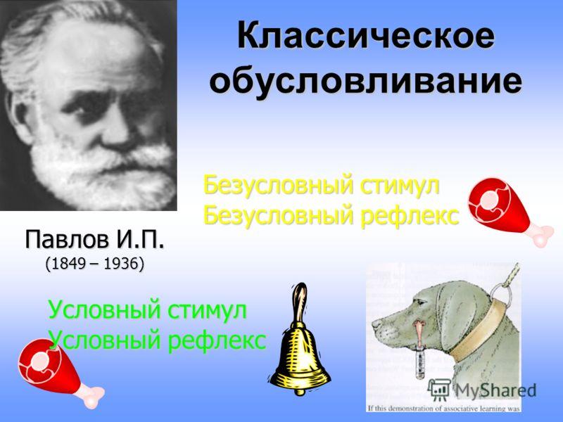 Типы научения 1)классическое обусловливание (И.П. Павлов, Дж.Уотсон) 2) оперантное обусловливание (Б.Ф.Скиннер) 3) социальное научение, или подражание (А.Бандура)