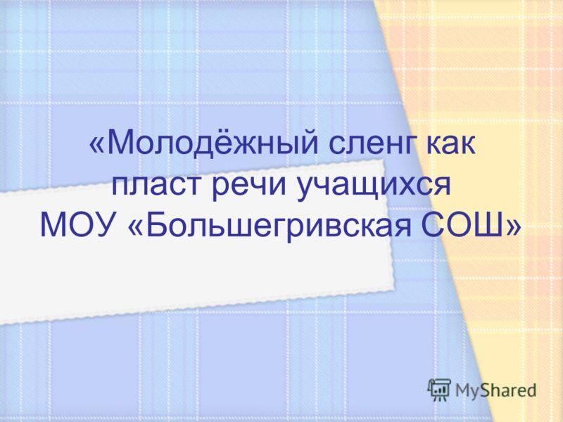 «Молодёжный сленг как пласт речи учащихся МОУ «Большегривская СОШ»