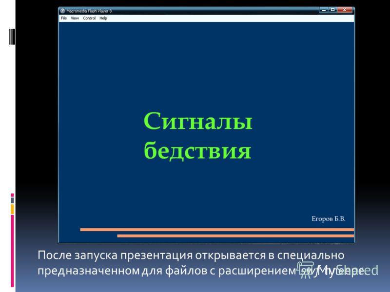 После запуска презентация открывается в специально предназначенном для файлов с расширением swf плеере.