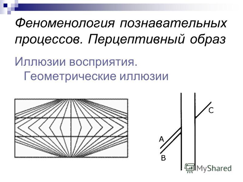 Феноменология познавательных процессов. Перцептивный образ Иллюзии восприятия. Геометрические иллюзии