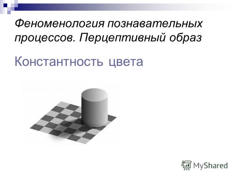 Феноменология познавательных процессов. Перцептивный образ Константность цвета
