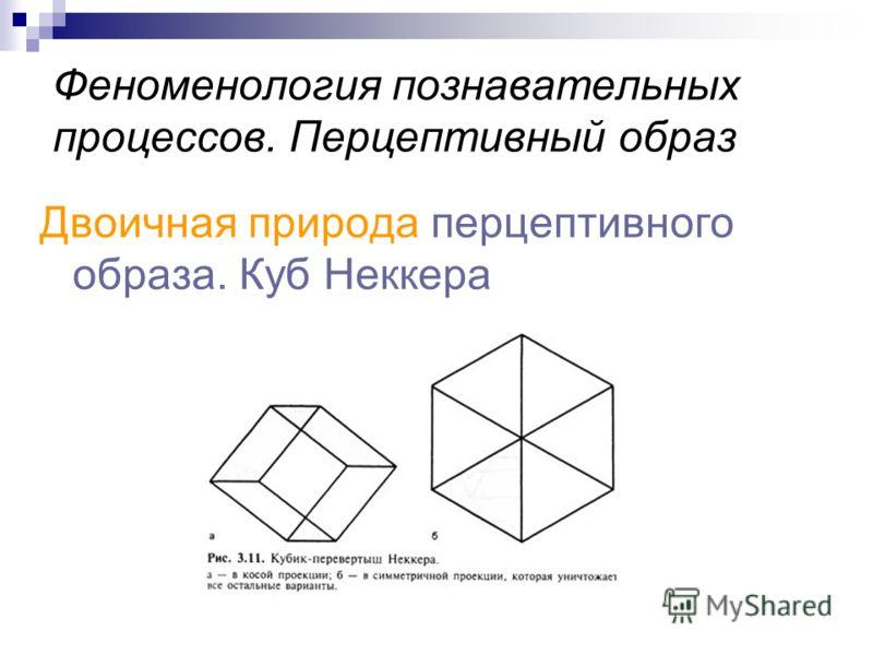 Феноменология познавательных процессов. Перцептивный образ Двоичная природа перцептивного образа. Куб Неккера