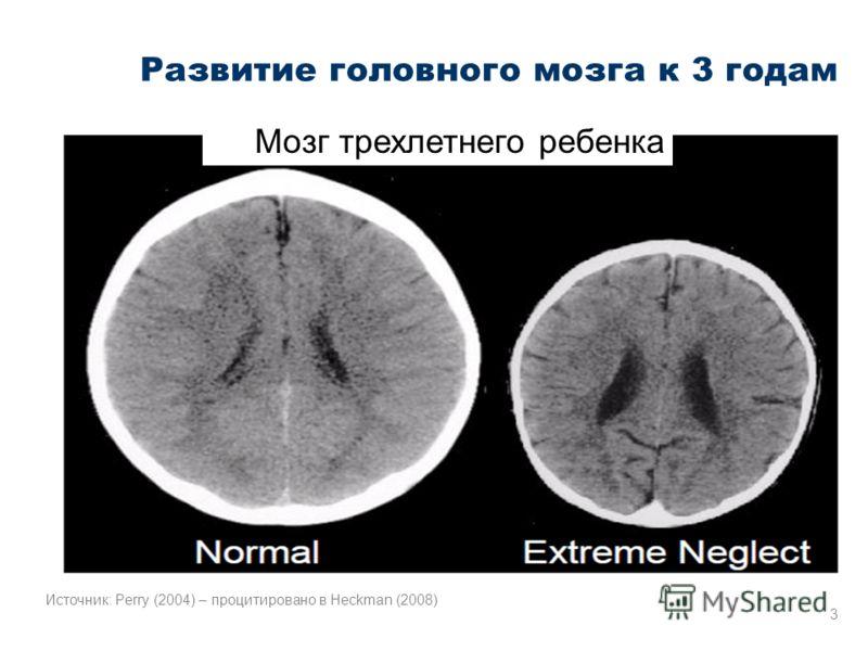 Развитие головного мозга к 3 годам Мозг трехлетнего ребенка 3 Источник: Perry (2004) – процитировано в Heckman (2008)