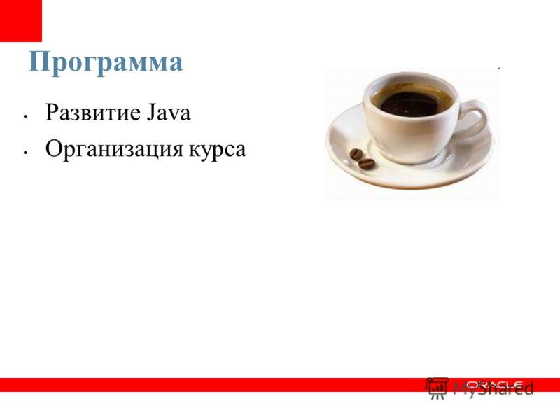 Программа Развитие Java Организация курса