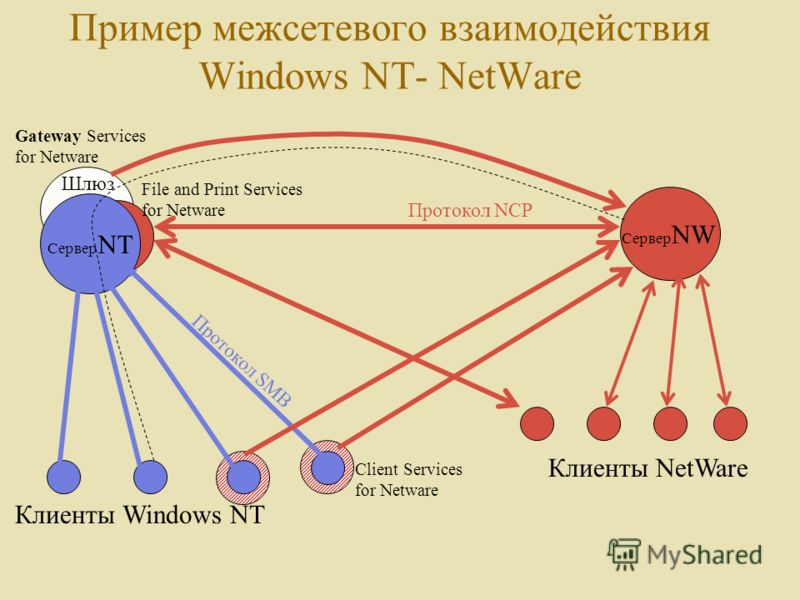 Пример межсетевого взаимодействия Windows NT- NetWare Сервер NT Сервер NW Клиенты Windows NT Клиенты NetWare Client Services for Netware File and Print Services for Netware Gateway Services for Netware Протокол NCP Протокол SMB Шлюз