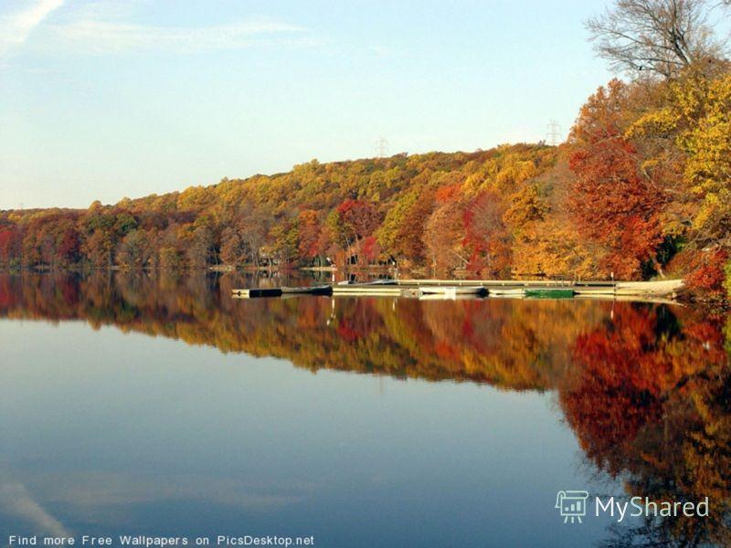 Ноябрь - последний календарный месяц осени. Ноябрь - ворота зимы. В ноябре зима с осенью борются. Холоден батюшка - октябрь, а ноябрь и его перехолодил.