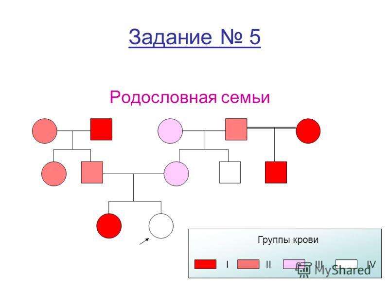 Задание 5 Родословная семьи Группы крови IIIIIIIV
