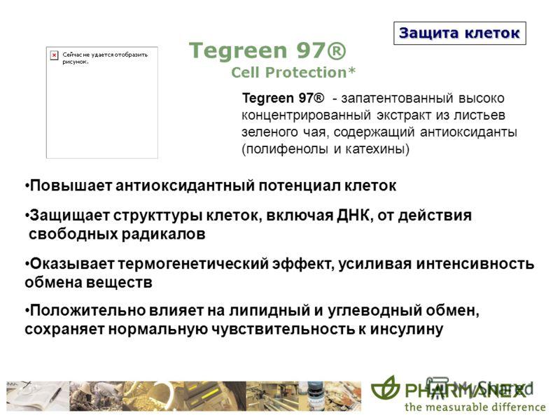 Защита клеток Tegreen 97® Cell Protection* Tegreen 97® - запатентованный высоко концентрированный экстракт из листьев зеленого чая, содержащий антиоксиданты (полифенолы и катехины) Повышает антиоксидантный потенциал клеток Защищает структтуры клеток,