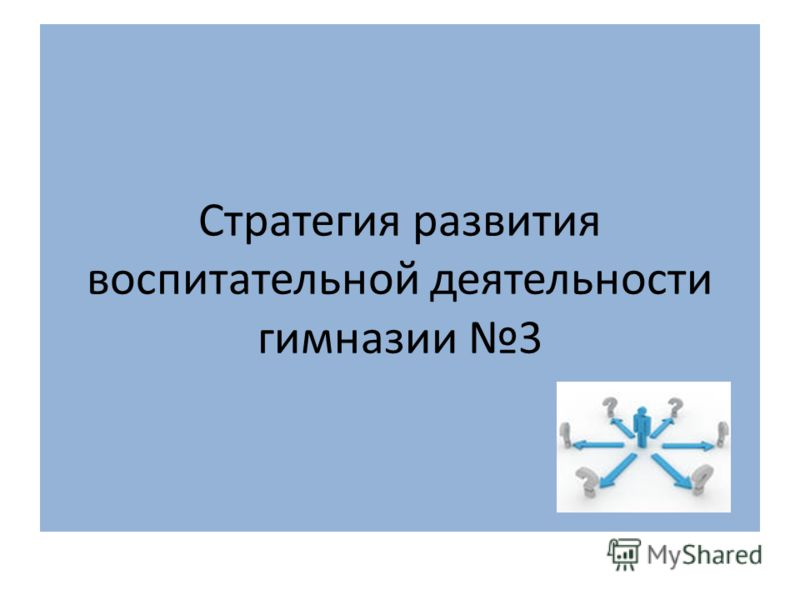 Стратегия развития воспитательной деятельности гимназии 3