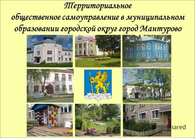 Территориальное общественное самоуправление в муниципальном образовании городской округ город Мантурово