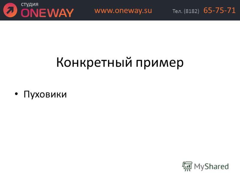 Конкретный пример Пуховики Тел. (8182) 65-75-71www.oneway.su