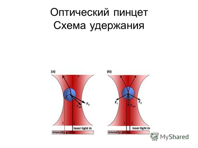 Оптический пинцет Схема удержания