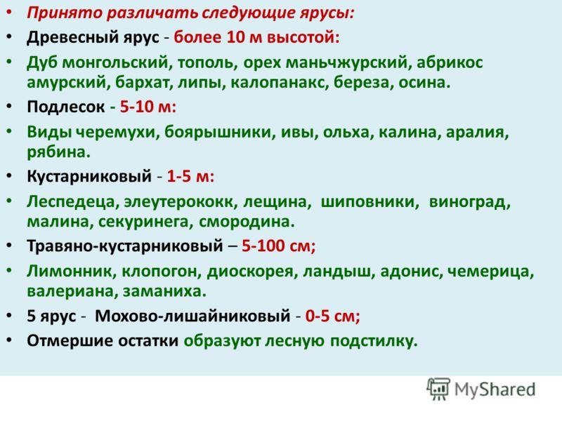 Принято различать следующие ярусы: Древесный ярус - более 10 м высотой: Дуб монгольский, тополь, орех маньчжурский, абрикос амурский, бархат, липы, калопанакс, береза, осина. Подлесок - 5-10 м: Виды черемухи, боярышники, ивы, ольха, калина, аралия, р