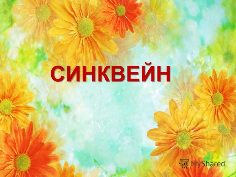 Цветы-характеры
