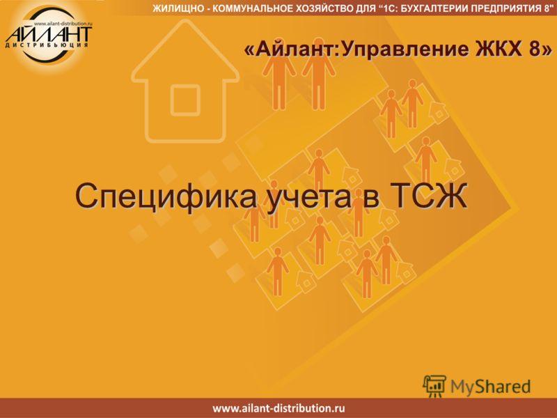Специфика учета в ТСЖ «Айлант:Управление ЖКХ 8» «Айлант:Управление ЖКХ 8»
