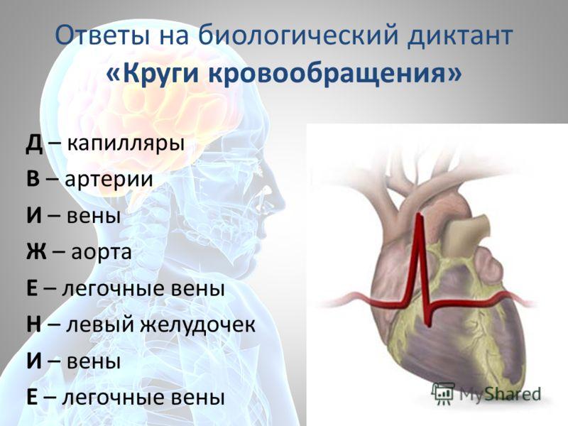 Ответы на биологический диктант «Круги кровообращения» Д – капилляры В – артерии И – вены Ж – аорта Е – легочные вены Н – левый желудочек И – вены Е – легочные вены