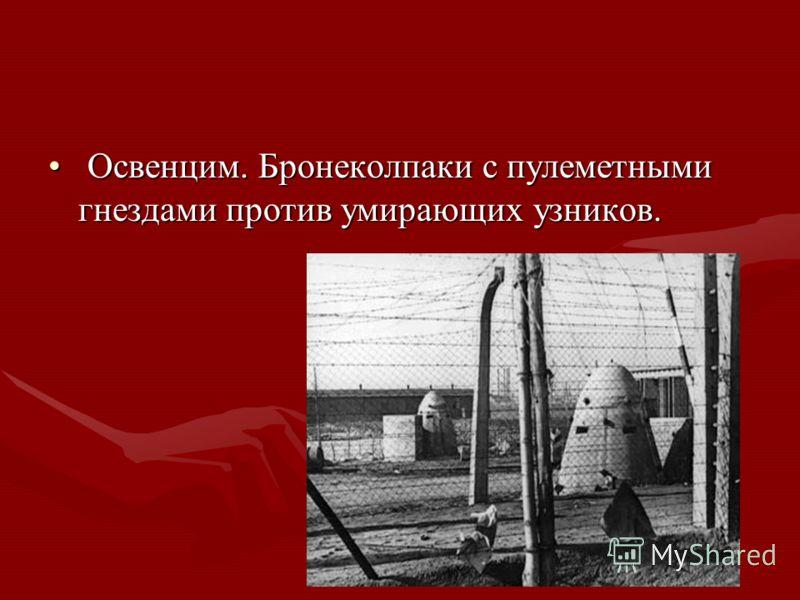 Освенцим. Бронеколпаки с пулеметными гнездами против умирающих узников. Освенцим. Бронеколпаки с пулеметными гнездами против умирающих узников.