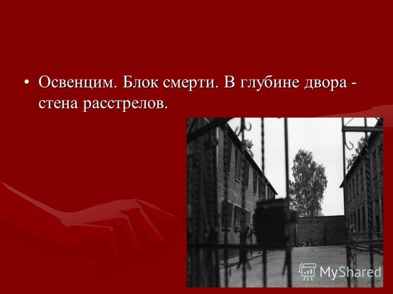 Освенцим. Блок смерти. В глубине двора - стена расстрелов.Освенцим. Блок смерти. В глубине двора - стена расстрелов.