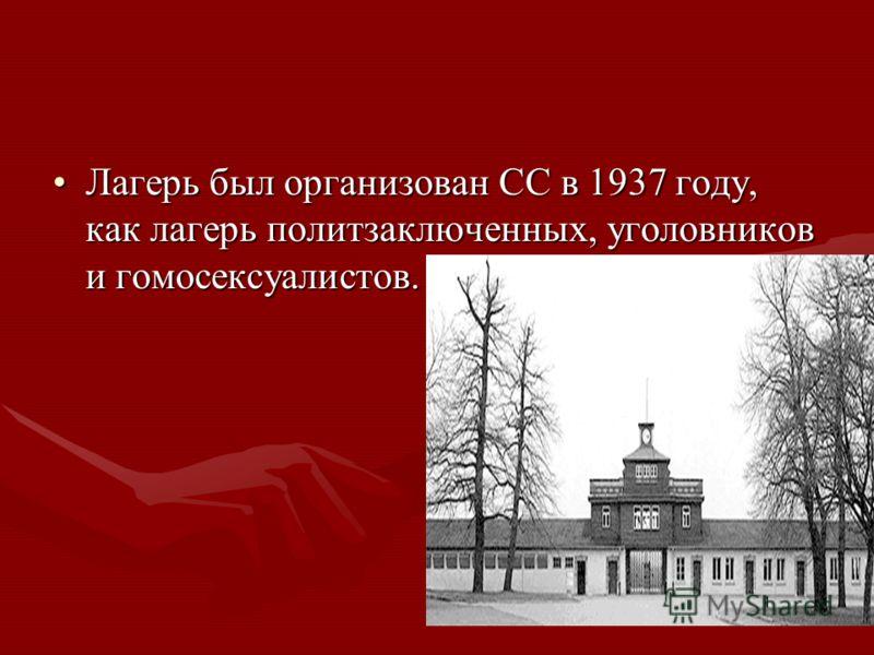 Лагерь был организован СС в 1937 году, как лагерь политзаключенных, уголовников и гомосексуалистов.Лагерь был организован СС в 1937 году, как лагерь политзаключенных, уголовников и гомосексуалистов.