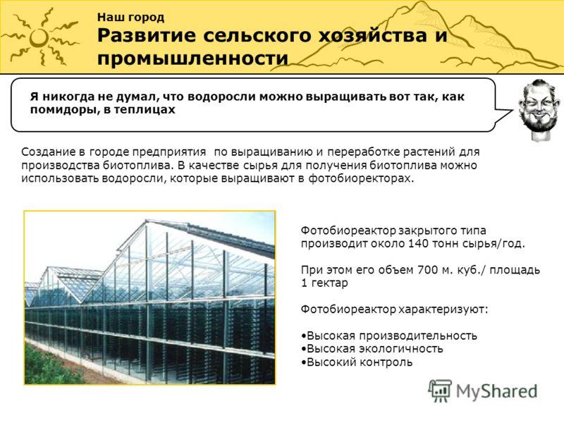 Наш город Развитие сельского хозяйства и промышленности Я никогда не думал, что водоросли можно выращивать вот так, как помидоры, в теплицах Создание в городе предприятия по выращиванию и переработке растений для производства биотоплива. В качестве с