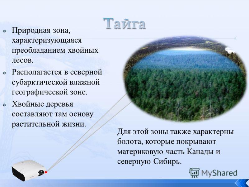 Природная зона, характеризующаяся преобладанием хвойных лесов. Располагается в северной субарктической влажной географической зоне. Хвойные деревья составляют там основу растительной жизни. Для этой зоны также характерны болота, которые покрывают мат