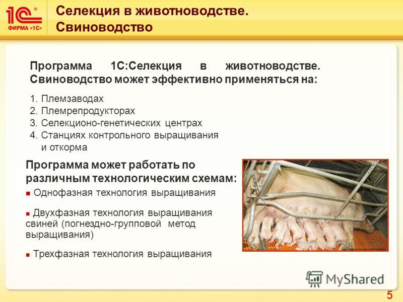 5 Программа 1С:Селекция в животноводстве. Свиноводство может эффективно применяться на: 1. Племзаводах 2. Племрепродукторах 3. Селекционо-генетических центрах 4. Станциях контрольного выращивания и откорма Программа может работать по различным технол