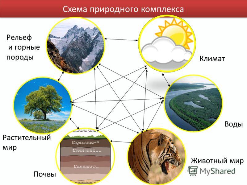 План урока: 1.Природно-ресурсный потенциал России, его оценка 2.Проблемы и перспективы использования природных ресурсов. 3. Основные ресурсные базы. 4.Обеспеченность России природными ресурсами. 5.Дисбаланс в обеспеченности основными видами ресурсов