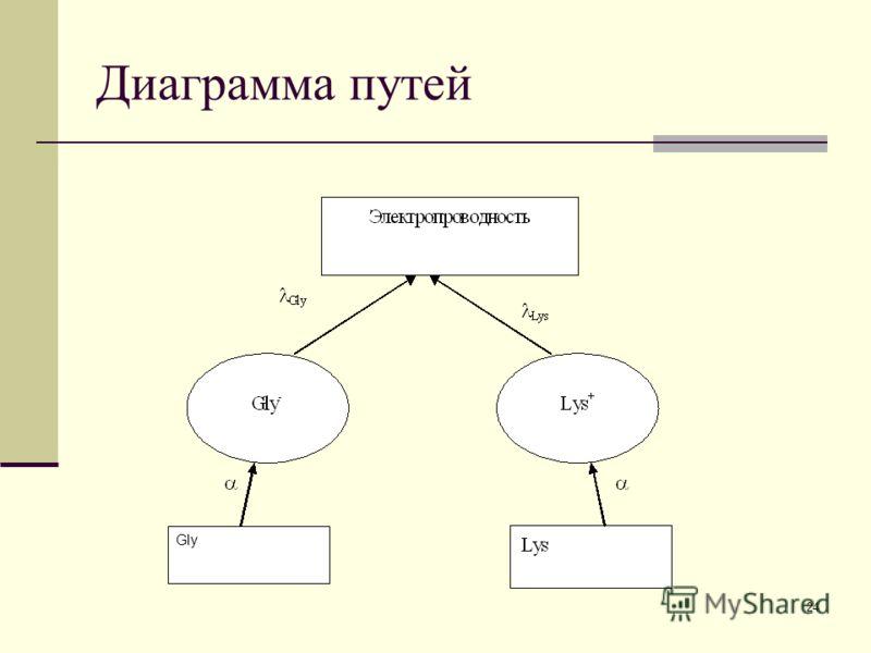 24 Диаграмма путей Gly