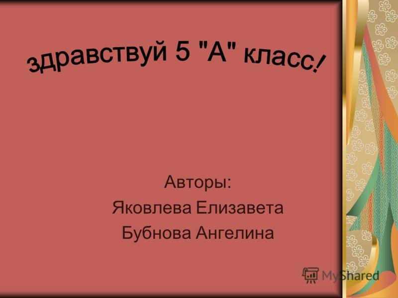 Авторы: Яковлева Елизавета Бубнова Ангелина