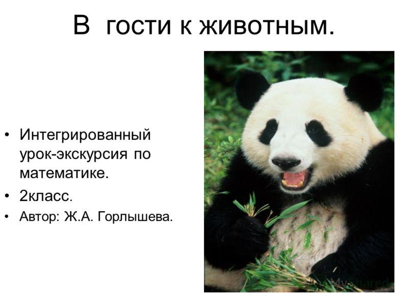 В гости к животным. Интегрированный урок-экскурсия по математике. 2класс. Автор: Ж.А. Горлышева.