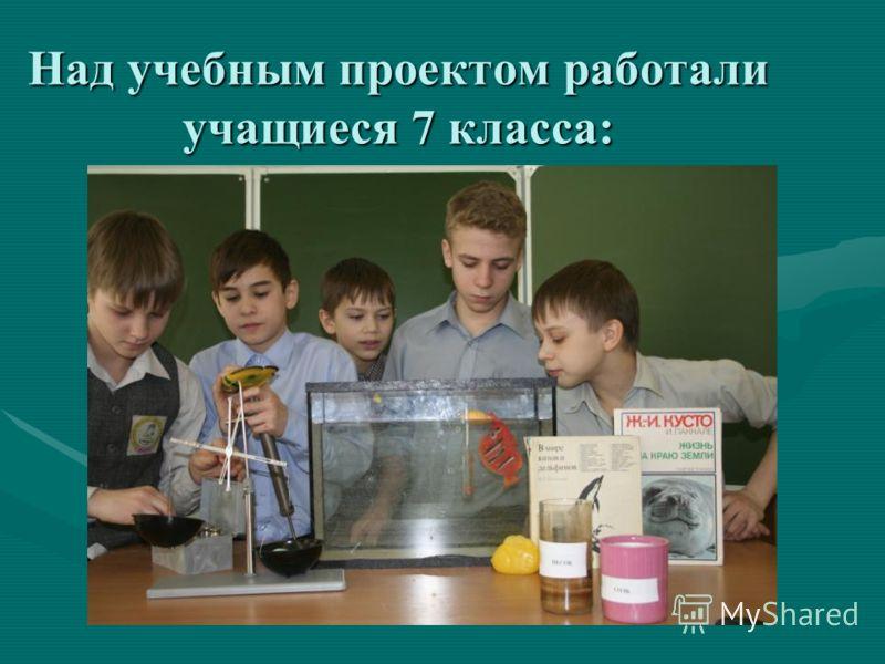 Над учебным проектом работали учащиеся 7 класса:
