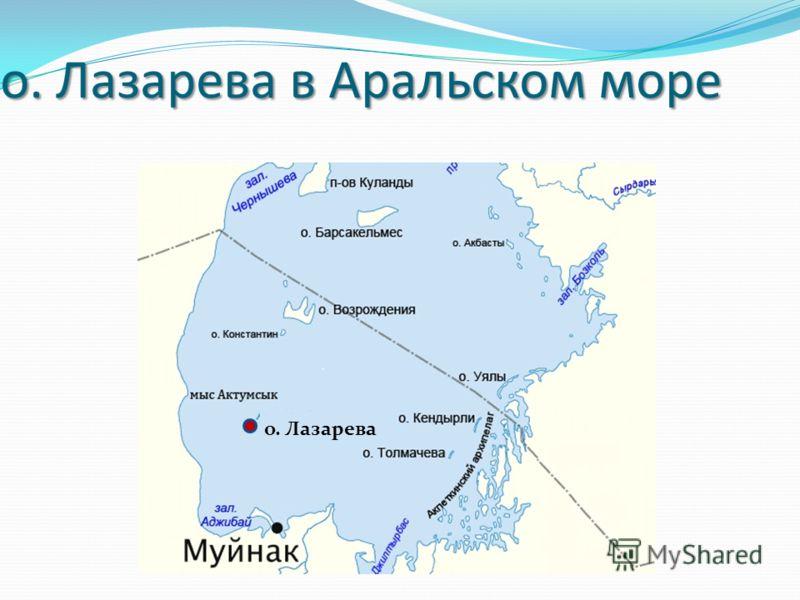 о. Лазарева в Аральском море о. Лазарева