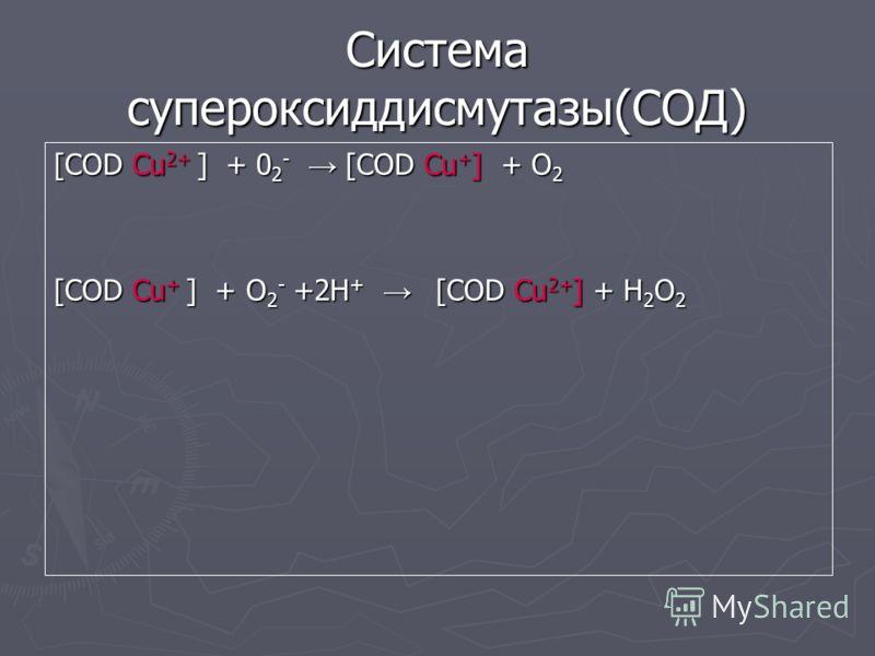 Система супероксиддисмутазы(СОД) [COD Cu 2+ ] + 0 2 - [COD Cu + ] + О 2 [COD Cu + ] + O 2 - +2Н + [COD Cu 2+ ] + Н 2 О 2