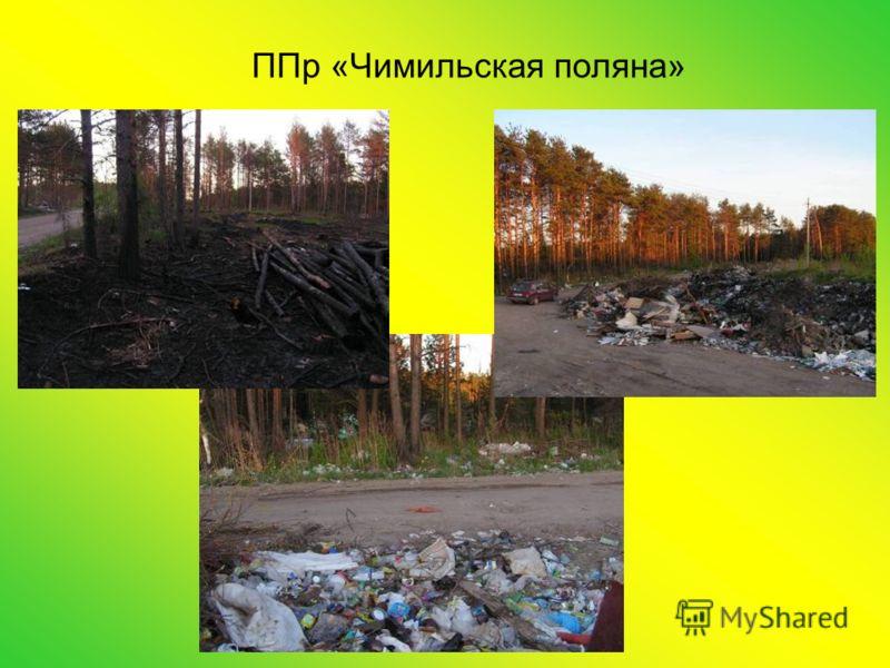 ППр «Чимильская поляна»