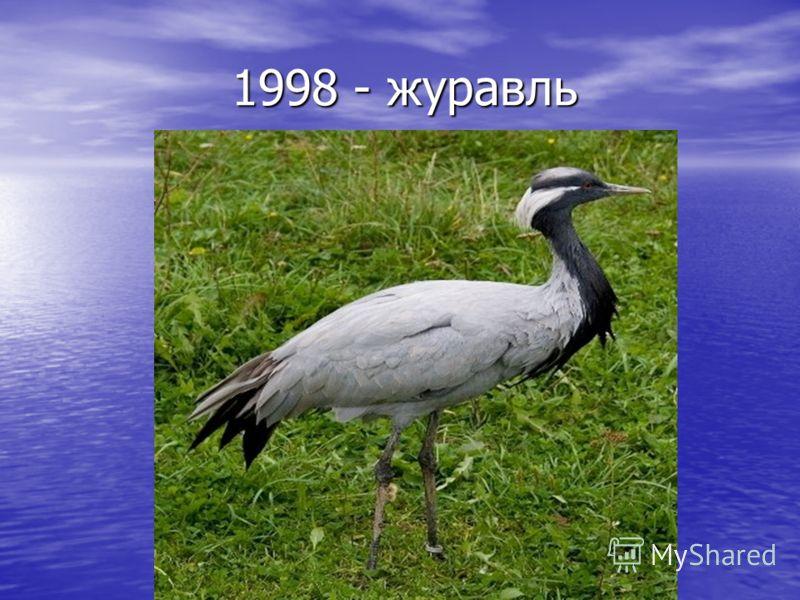 1998 - журавль 1998 - журавль