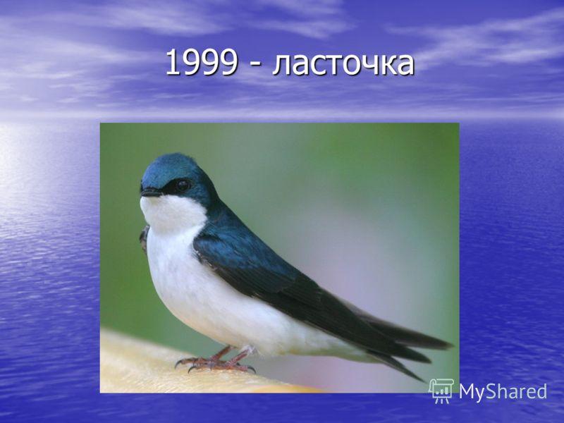 1999 - ласточка 1999 - ласточка