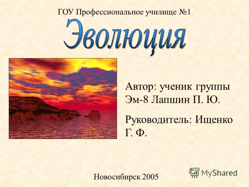 ГОУ Профессиональное училище 1 Новосибирск 2005 Автор: ученик группы Эм-8 Лапшин П. Ю. Руководитель: Ищенко Г. Ф.