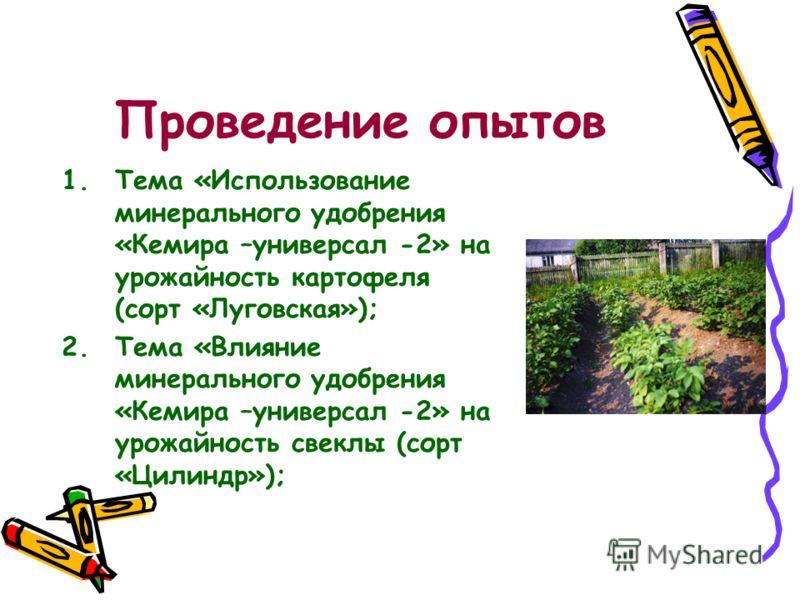 Проведение опытов 1.Тема «Использование минерального удобрения «Кемира –универсал -2» на урожайность картофеля (сорт «Луговская»); 2.Тема «Влияние минерального удобрения «Кемира –универсал -2» на урожайность свеклы (сорт «Цилиндр»);