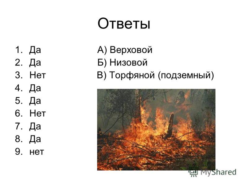 Ответы 1.Да А) Верховой 2.Да Б) Низовой 3.Нет В) Торфяной (подземный) 4.Да 5.Да 6.Нет 7.Да 8.Да 9.нет