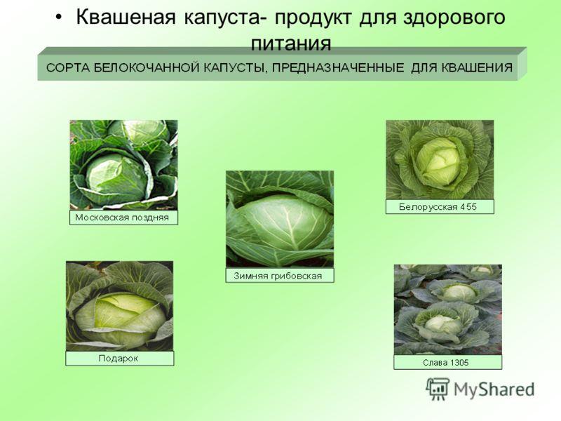 Квашеная капуста- продукт для здорового питания