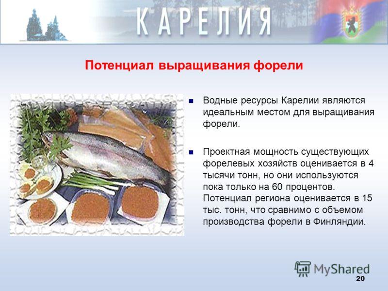 20 Потенциал выращивания форели Водные ресурсы Карелии являются идеальным местом для выращивания форели. Проектная мощность существующих форелевых хозяйств оценивается в 4 тысячи тонн, но они используются пока только на 60 процентов. Потенциал регион