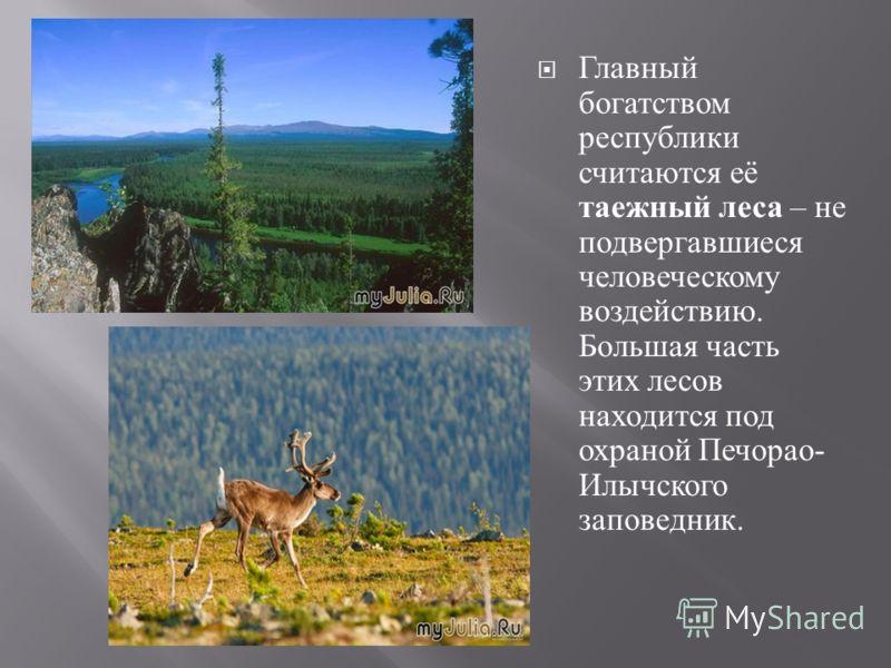 Главный богатством республики считаются её таежный леса – не подвергавшиеся человеческому воздействию. Большая часть этих лесов находится под охраной Печорао - Илычского заповедник.