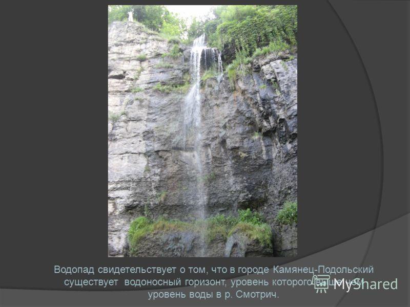 Водопад свидетельствует о том, что в городе Камянец-Подольский существует водоносный горизонт, уровень которого выше чем уровень воды в р. Смотрич.